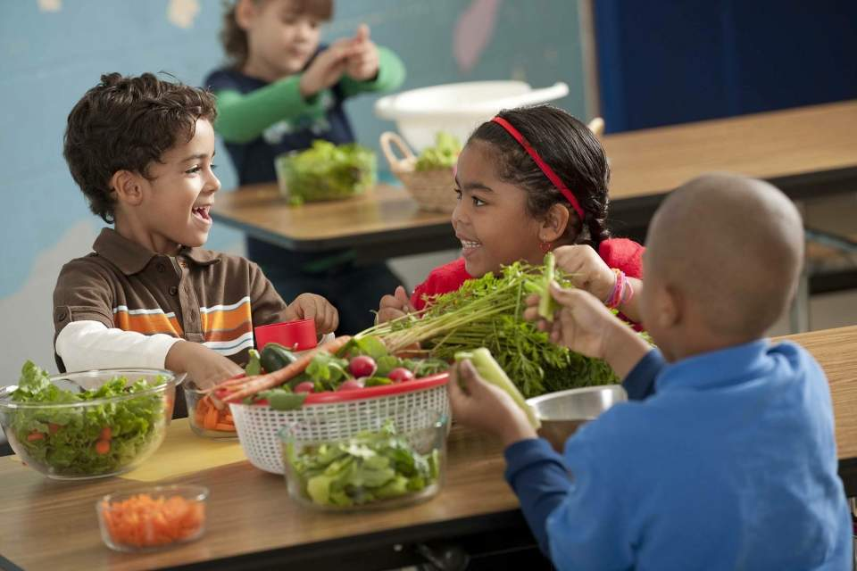 New Report on Good Food at the Buffalo Public Schools